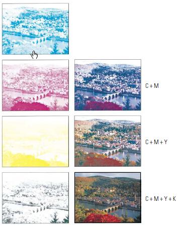 Farbauszüge - Zusammendruck